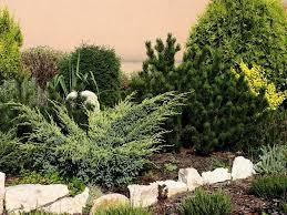 Home Landscape Design Tool by Online Landscape Design Program Tool U2014 Home Landscapings