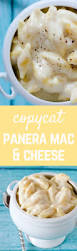 copycat panera mac and cheese one pan rachel cooks