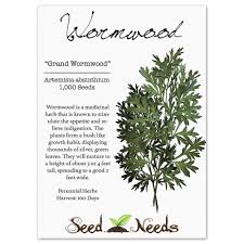How Many Stories Is 1000 Feet Amazon Com Package Of 1 000 Seeds Wormwood Herb Artemisia