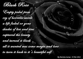 black roses black wallpaper images 4 widescreen wallpaper