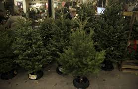 will christmas trees light up retail wsj