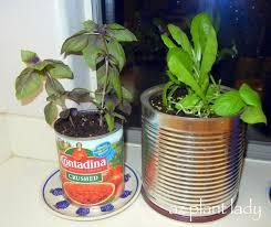 Indoor Garden Containers - 163 best indoor gardening images on pinterest gardening indoor