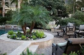 tropical houston landscaping ideas u0026 design photos houzz