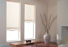 Roll Up Blinds For Windows Shades Amazing Pull Down Shades For Windows Cool Roman Shade