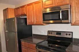Different Types Of Kitchen Countertops by Kitchen Pleasurable Black Granite Countertops Kitchen Design