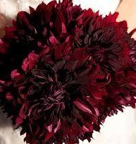 burgundy flowers 79 best burgundy wine wedding flowers images on