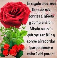 bonitas de rosas rojas con frases de amor imagenes de amor facebook imágenes de rosas rojas con frases románticas para regalar