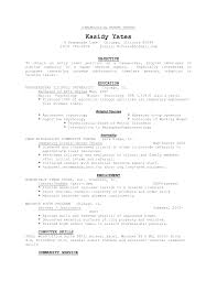 Community Service Resume Template Resume Chronological Resume Templates