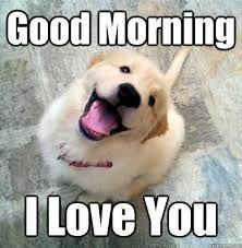 Meme Good Morning - good morning i love you love meme ilove messages