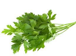 7 wonderful parsley health benefits organic facts