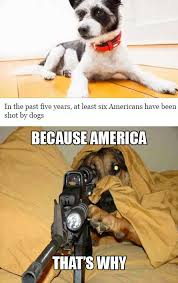 Bad Dog Meme - dogs with guns funny pics memes captioned pictures