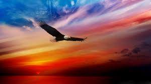 Spiritual Warfare Flags Bald Eagle Flag Background 2560 1440 Simpletruth