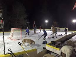 Backyard Rink Liner by The 25 Best Backyard Ice Rink Ideas On Pinterest Ice Rink Ice