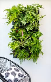 Wall Gardens Sydney by Greenwall U2013 Vertical Gardening Holman Industries
