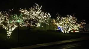 christmas lights in maryland christmas lights 2012 at the washington mormon temple maryland