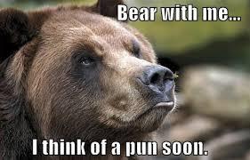 bear puns punpedia