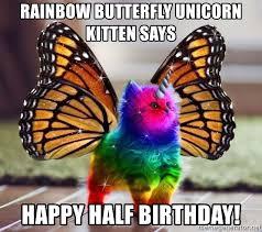 Unicorn Meme Generator - rainbow butterfly unicorn kitten says happy half birthday