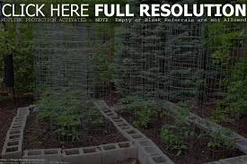 how to grow a vegetable garden in florida home outdoor decoration