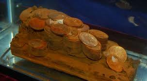 Gold Coins Found In California Backyard Historic Shipwreck Found Wooden Cargo Box With Approximately 110
