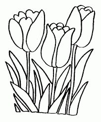 spring flowers coloring pages free printable archives and free