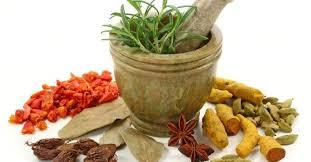 ramuan bercinta obat tradisional tahan lama dan keras obat kuat