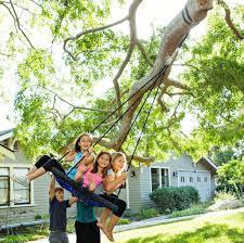 atomic rotator 360º swivel hook tree swing hanging kit two