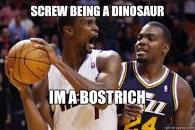 Chris Bosh Memes - screw being a dinosaur im a bostrich chris bosh dinosaur quickmeme