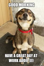 Have A Great Day Meme - good morning have a great day at work addie good dog greg