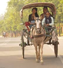 indian cart calesa indian version indian also use horse carts howev u2026 flickr