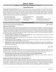 sales executive resume 24 best sle executive resume templates wisestep