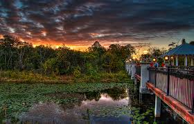 Largo Botanical Garden Florida Botanical Gardens And Heritage Florida Inns