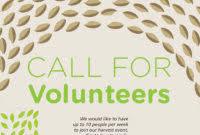 volunteer brochure template volunteer brochure template best sles templates