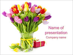 tulip flowers powerpoint template u0026 backgrounds id 0000003455