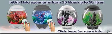 fish tanks marine aquarium supplies birmingham uk shirley