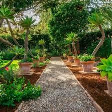 Backyard Tree Ideas Gorgeous 24 Fantastic Backyard Vegetable Garden Ideas As Well As