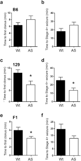 strain dependence of the angelman syndrome phenotypes in ube3a