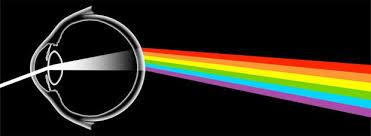 colors radiolab