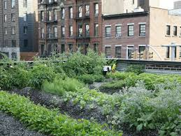 farm to table restaurants nyc the rooftop garden at rosemary s best farm to table restaurants