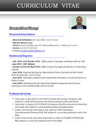 Project Engineer Resume Sample by Cv Englais Mongi
