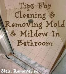remove mildew from bathroom ceiling how to clean mold bathroom justget club