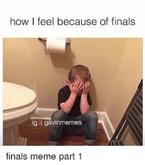 Finals Meme - 20 really funny finals memes that ll make you feel better