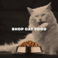 pet shop online buy dog food pet supplies leash feeding bowl