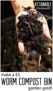 3101 best growing a food garden images on pinterest organic