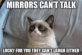 Mirror Meme - grumpy cat bed meme mirrors can罎竄ャ邃 t talk lucky for you they can罎