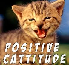 Be Happy Memes - great cats be funny blog some funny cat memes