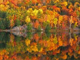 New Hampshire lakes images The best places to see fall foliage in new hampshire 39 s lakes region jpg