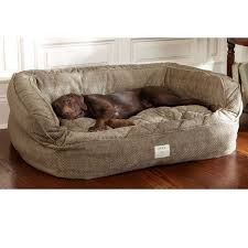 Dog Sofa Cover by Best 25 Dog Couches Ideas On Pinterest Dog Couch Cover Dog