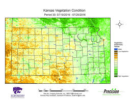 Kansas vegetaion images K state agronomy eupdate issue 582 july 29th 2016 gif