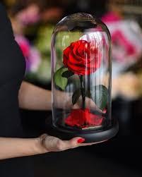 como hacer mascaras en forma de rosa alguien creó rosas como las de la bella y la bestia pero estas