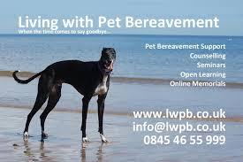 pet bereavement living with pet bereavement home